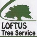 loftus_125x125_ad.jpg