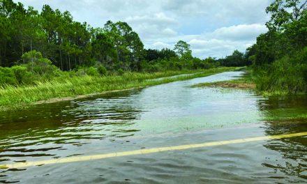 FEMA Updates Its Flood Insurance Rating Methodology