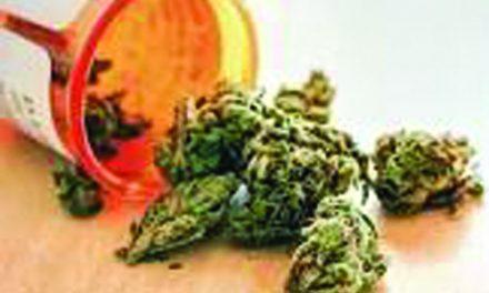 EDITORIAL:  The Case for Medicinal Marijuana
