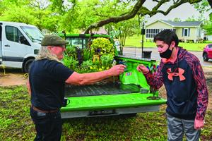 Long Beach Receives Attention from the Gestalt Gardener